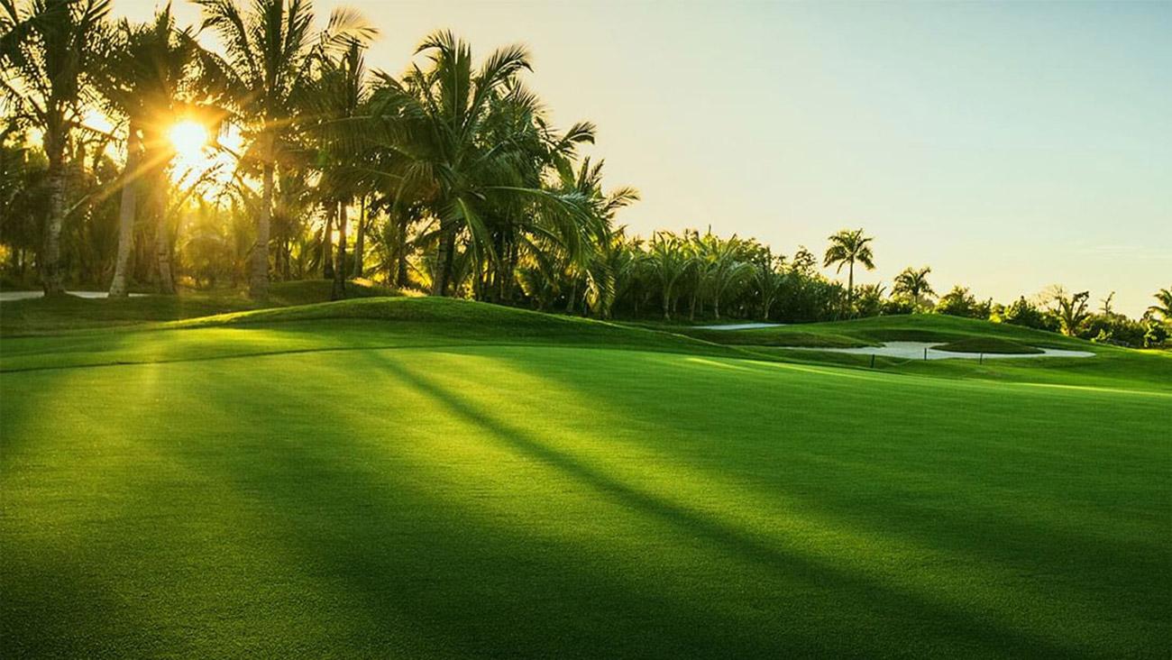 Sân Golf chuyên nghiệp gần bên dự án Aqua City Đảo Phụng Hoàng Đồng Nai