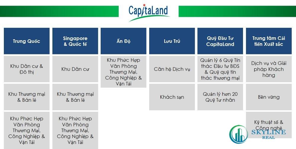 Lĩnh vực hoạt động của chủ đầu tư CapiataLand